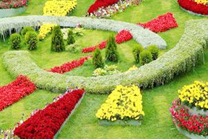 Особенности ландшафтного дизайна сада