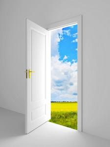 Карельские двери: экологичные и доступные абсолютно каждому