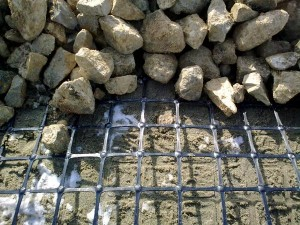 Geogrid and geogrid