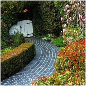 Paving stone in the garden