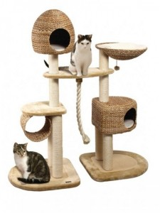 Scratching posts and houses