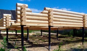Screw piles for the foundation