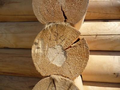 Усадка деревянного дома из бревна