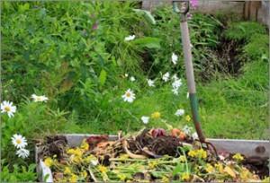 We make quality compost