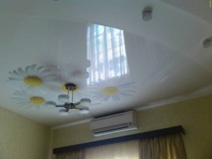 bleach plastic ceilings