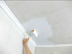 ceiling for painting