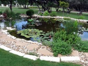 equipment for pond