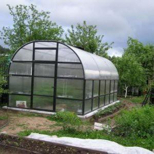 greenhouse prepare for the new season