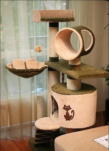 houses for cats