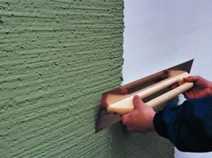 plastering woodworm